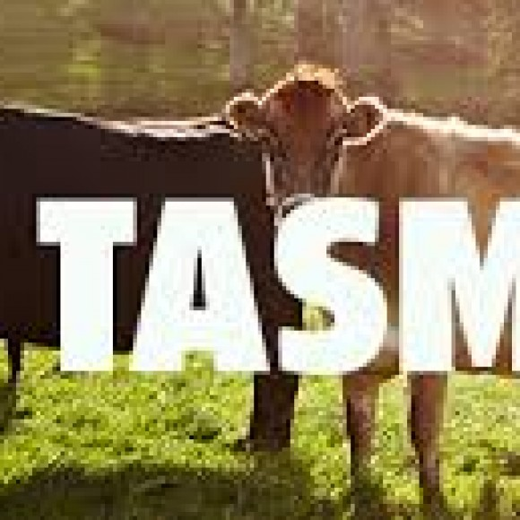 Profile picture of Tasmania Craft Milk Brand Founder Seeks Business Partners - storyID 4098